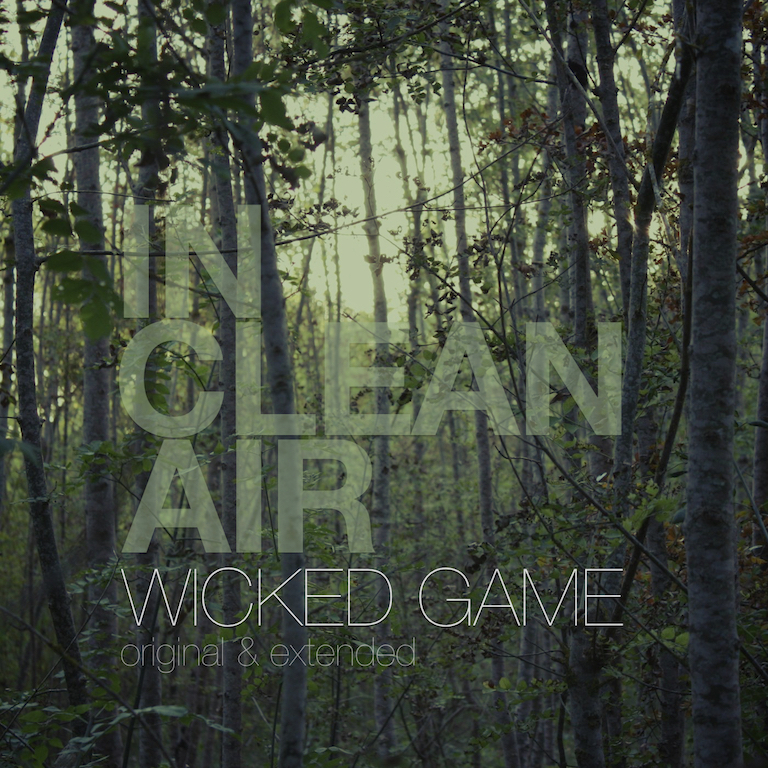 Wicked Game Album Cover